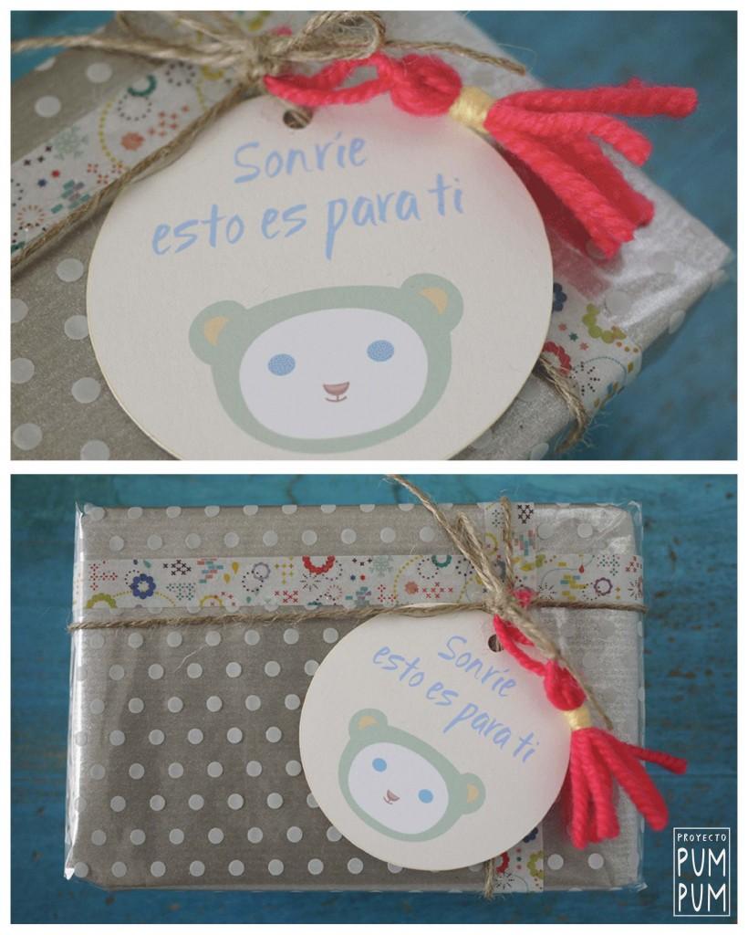 proyectopumpum_packaging_decargables_oso_detalle